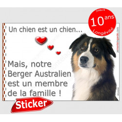 """Aussie tricolore noir tête, sticker autocollant """"Love"""" 16 x 11 cm, intérieur/Extérieur"""