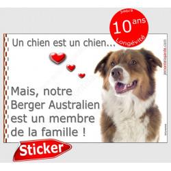 """Sticker autocollant """"Love"""" Berger Australien tricolore rouge Tête, intérieur/Extérieur, membre famille aussie cadeau photo chien"""