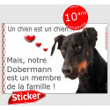 """Dobermann Tête, sticker """"Love"""" 16 x 11 cm"""