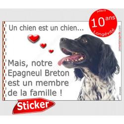 """Sticker autocollant """"Love"""" 16 x 11 cm, Epagneul Breton noir Tête, intérieur/Extérieur adhésif coeur membre de la famille photo"""