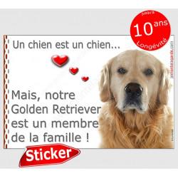 """Golden Retriever Tête, sticker autocollant """"Love"""" 16 x 11 cm, intérieur/Extérieur, adhésif idée cadeau photo membre famille"""