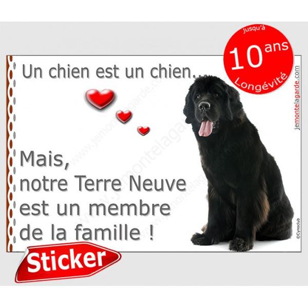 """Terre Neuve noir assis, sticker autocollant """"Love"""" 16 x 11 cm, intérieur/Extérieur adhésif photo chien coeur"""