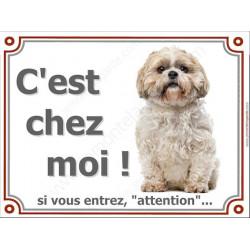 Shih-Tzu Assis, Plaque portail C'est Chez Moi ! panneau affiche pancarte, attention chien Shih-Tsu