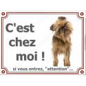 """Griffon Bruxellois, plaque portail """"C'est Chez Moi !"""" 4 tailles"""