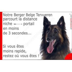 Plaque humour 24 cm Berger Belge Tervueren Tête parcourt Distance Niche - Portail moins 3 secondes, pancarte attention au chien