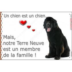 """Terre Neuve Noir Assis, plaque """"Membre de la Famille"""" 24 cm LOV A"""