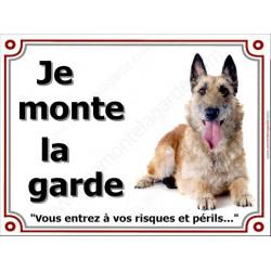 """Berger Belge Laekenois, Plaque portail """"Je Monte la Garde, risques périls"""" panneau affiche pancarte photo race"""