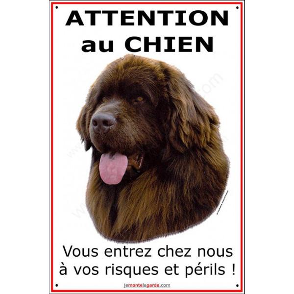 Terre Neuve Chocolat Tête, Plaque portail attention au chien, affiche pancarte panneau, risque péril marron bronze