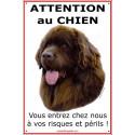 """Terre Neuve Chocolat Tête, plaque """"Attention au Chien"""" 24 cm ECO"""