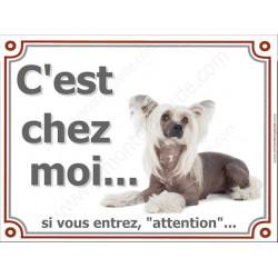 Chien Chinois à Crête, Plaque portail C'est Chez Moi ! panneau affiche pancarte, attention chien