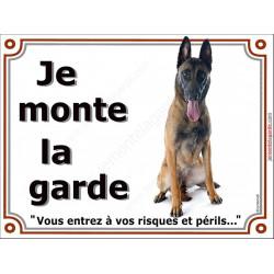 Berger Belge Malinois Assis, Plaque portail Je Monte la Garde, panneau affiche pancarte, risques périls