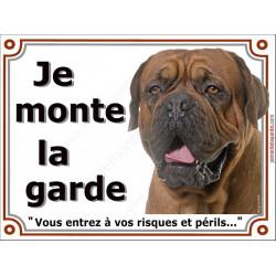 """Dogue de Bordeaux face noire tête, plaque portail, photo """"Je Monte la Garde risques périls"""" pancarte Attention au Chien"""