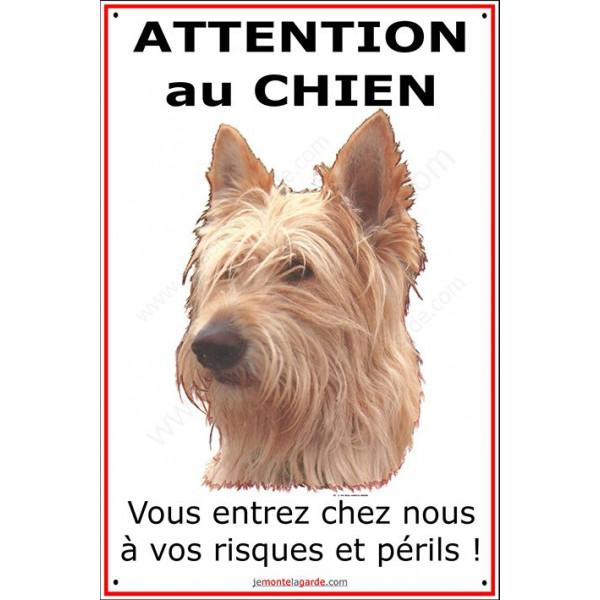 Berger Picard, Plaque Classique Verticale Attention au Chien, risques et périls photo pancarte panneau