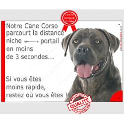 Plaque humour 24 cm 3SEC, Distance Niche - Portail, Cane Corso bleu Tête pancarte panneau marrant gris attention au chien