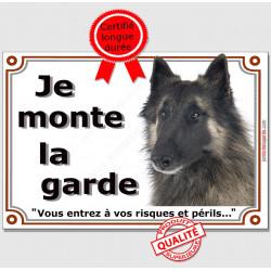 """Berger Belge Tervueren tête, plaque portail """"Je Monte la Garde, risques et périls"""" pancarte panneau photo attention au chien"""
