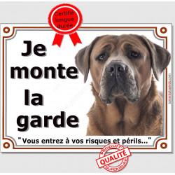 """Cane Corso Italiano fauve marron Tête, plaque """"Je Monte la Garde, risques et périls"""" , pancarte photo panneau attention au Chien"""