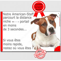 "Am-Staff Fauve couché, plaque ""distance Niche - Portail"" 24 cm 3SEC"