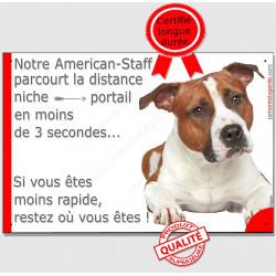 Plaque humour 24 cm, Distance Niche - Portail moins de 3 secondes, Am Staff fauve Tête, pancarte drôle american marrant plaque