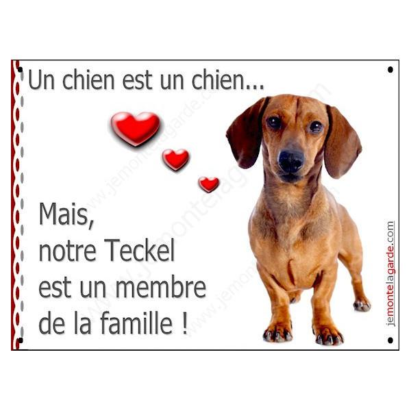 Teckel Poils Ras Fauve, Plaque Portail un chien est un chien, membre de la famille, pancarte, affiche panneau