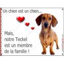 Plaque 16 cm LOVE Membre de la Famille, Teckel Poils Ras Fauve