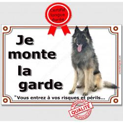 """Berger Belge Tervueren assis, plaque portail """"Je Monte la Garde, risques et périls"""" pancarte panneau photo attention au chien"""