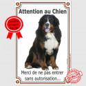 """Bouvier Bernois, plaque """"Attention au Chien"""" 24 cm VLC"""