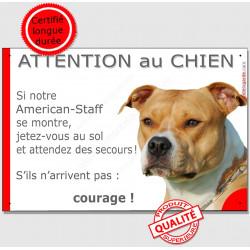 Plaque portail humour 24 cm, Jetez Vous au Sol, Am-Staff fauve et blanc Tête, attention au chien, pancarte drôle panneau marrant