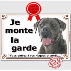 """Cane Corso gris, plaque portail """"Je Monte la Garde, risques et périls"""" pancarte panneau bleu bringué attention au chien photo"""