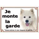 """Samoyède Tête, plaque """"Je Monte la Garde"""" 2 tailles LUX B"""