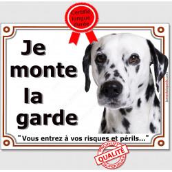 Dalmatien Tête, Plaque portail Je Monte la Garde, panneau affiche pancarte, risques périls attention au chien