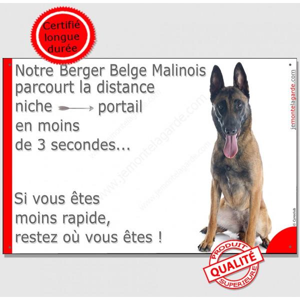 Berger Belge Malinois Assis, Plaque Portail distance niche-portail 3 secondes, pancarte, affiche panneau attention au chien