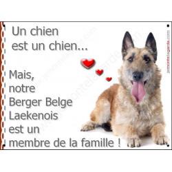 """Laekenois , plaque """"Membre de la Famille"""" 16 cm LOVE"""