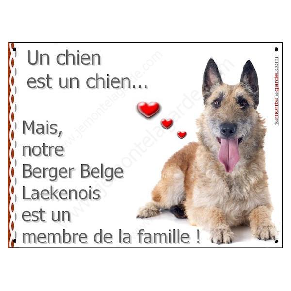 Berger Belge Laekenois, Plaque Portail un chien est un chien, membre de la famille, pancarte, affiche panneau