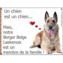 Plaque 16 cm LOVE Membre de la Famille, Berger Belge Laekenois