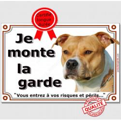 American Staff Fauve et Blanc Tête, Plaque portail Je Monte la Garde, panneau affiche pancarte, risques périls am-staff attentio