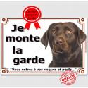 "Labrador Chocolat Tête, plaque ""Je Monte la Garde"" 4 tailles LUX B"
