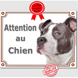 "American Staff bleu, plaque portail ""Attention au Chien"" pancarte panneau staff gris photo amstaff"