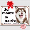 "Husky Marron foie tête, plaque ""Je Monte la Garde"" 4 tailles LUX B"