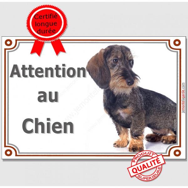 """Teckel Poils Durs assis, Panneau portail """"Attention au Chien"""" plaque affiche pancarte"""