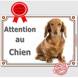 """Plaque portail horizontale Teckel Poils Longs Fauve """"Attention au chien"""" pancarte panneau photo"""