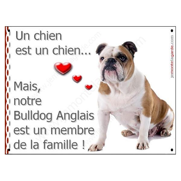 """Bulldog Anglais avec Cocard, Plaque Portail """"un chien est membre de la famille"""" pancarte, affiche panneau photo"""
