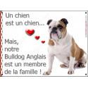 Plaque 16 cm LOVE Membre de la Famille, Bulldog Anglais avec Cocard