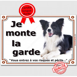 "Border Collie Couché, plaque ""Je Monte la Garde"" 3 tailles LUX B"