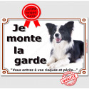 "Border Collie Couché, plaque ""Je Monte la Garde"" 3 tailles LUX C"