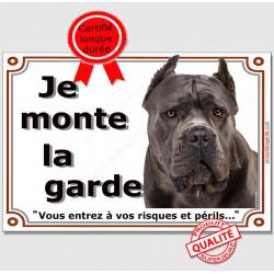 Plaque Je Monte la Garde, Cane Corso bleu gris Tête, pancarte risques et périls, panneau oreilles coupées