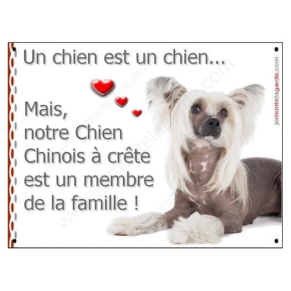 Chien Chinois à Crête, Plaque Portail un chien est un chien, membre de la famille, pancarte, affiche panneau