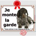 """Braque Allemand couché, plaque """"Je Monte la Garde"""" 4 tailles LUX B"""