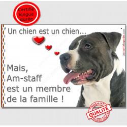 """Amstaff noir et blanc Tête, plaque """"Membre de la Famille"""" intérieur/extérieur American Staffordshire Terrier noir panneau"""