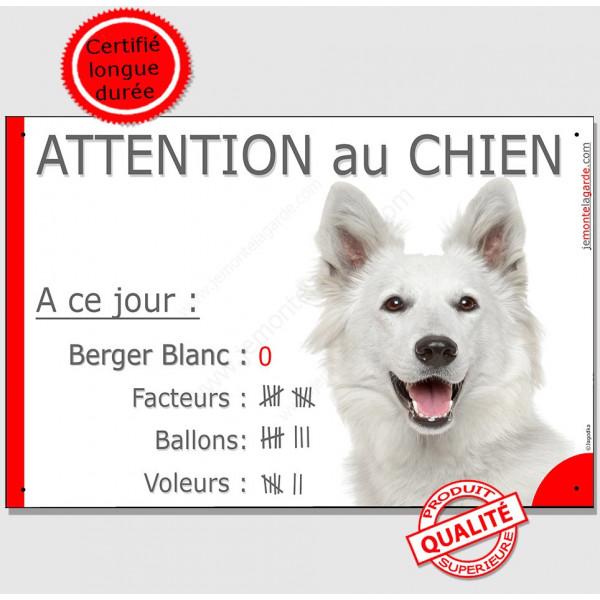 Berger Blanc Tête, Pancarte Portail drôle, panneau plaque Attention au chien nombre de Facteurs, Voleurs, Ballons !