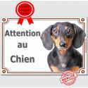 """Teckel Poils Ras, Plaque """"Attention au Chien """" 2 tailles LUX A"""